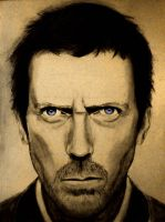 Dr. House by smokinsteve57