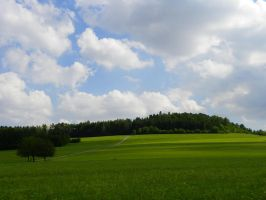 Green Hills, Black Forest by wbmj-photo