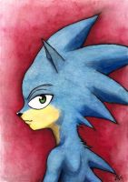 Sonic the Hedgehog by Desgan