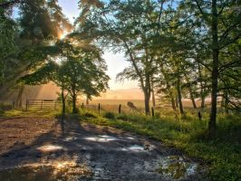 CadesCoveDawn2 HDR342 by gordo99