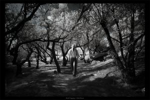Mind Tripping by gilad