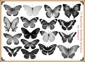 17 Beautiful Butterfly Brushes for Photoshop by Jiangsir
