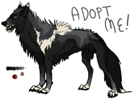 Older Wolf Adopt - ADOPTED by Esaki