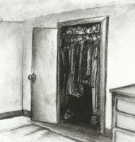 THe Virgin Closet Cover by Draco-McWherter