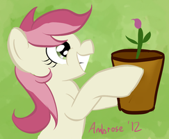 First bud of Spring by AmbroseButtercrust