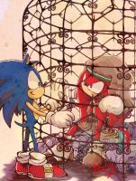 Sonic and Knuckles by riku-dou