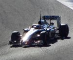Mclaren MP4-29 - Jan 2014 F1 Jerez Winter Testing by tezzan