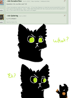 Q: I lost count by Ask---Hollyleaf