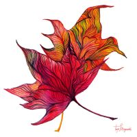 Autumn Leaves by Tory-Magnetto