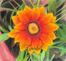 Sunflower by Everdell
