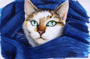 Rough sketch of my cat by Maya-Plisetskaya