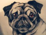 Its-a-Pug-Knot-Life by ClassicNoir