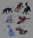 Seven cats by LadyAway