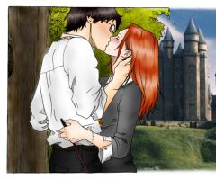 Harry and Ginny by The-Bassoon-Godess