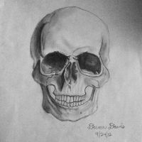 skull drawing by DevonDavis