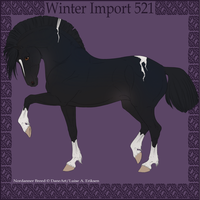 Winter import 521 by BaliroAdmin