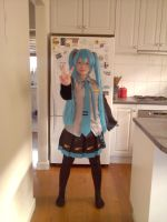 Miku Hatsune - Do What You Want by Nell-dono