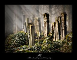 ...old jewish cementary... by canismaioris