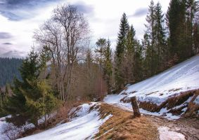 Mountain path by starykocur