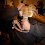 Facehugger Attack I by LDFranklin