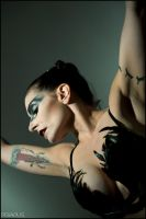 Black Swan by Anyssa