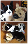 Douglas Cuddle Toys - The Two Majors by The-Toy-Chest