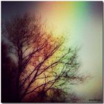 I see your true colors... by ansdesign