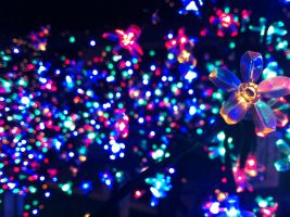 Garden Centre christmas lights colourful by BeccaBepha