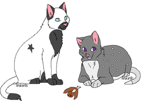 Poisonpaw and Froststar by xPandaCatx