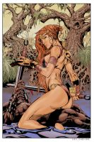 The BarbarianQueen Colour by neilchenier