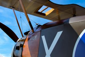 Sopwith F.1 Camel (Reproduction) by Daniel-Wales-Images
