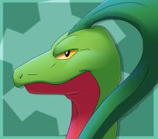 Grovyle - PMD by FireMoon9