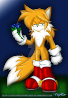 Tails 15 years -ZH-FN by SilverAlchemist09