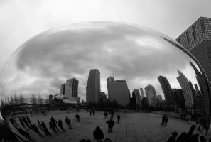 Reflecitons in the Bean by nwalter