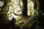 I Love MOSS by alexandre-deschaumes