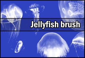 Jellyfish brush by Faeth-design