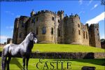 FF's CAMELOT CASTLE by magsislove