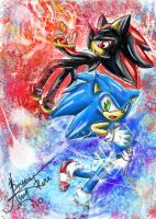 Sonic and Shadow:. by AmytheRose