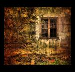 the window of the memories by Trifoto
