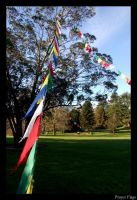 Prayer Flags by throwntothewolves