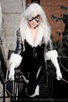 Black Cat  - 01 by galaktikmermaid