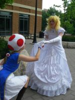 Loyal - Peach and Toad - Spring '12 by FuzzyRedPants