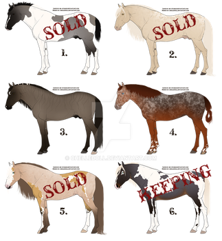 Equine Designs | open 4/6 | by chelledoll