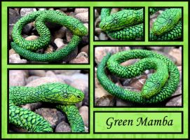 Green Mamba by Doktor-SchuSchu