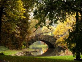 Bridge in Central Park by matthewparry