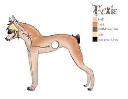 Rexie Reference Sheet by muffinonie