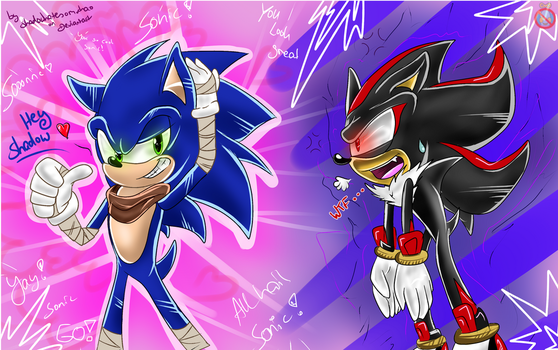 Sonic Boom and its consequences by shadowhatesomochao