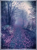 Fairy Wood IV by Weissglut