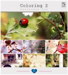 PSD Coloring 2 by friabrisa