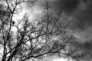 The Darkness of a Storm by PhotographicCrypto